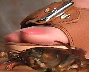 Milf Tammy crush fetish crawdad crd s115 shop115